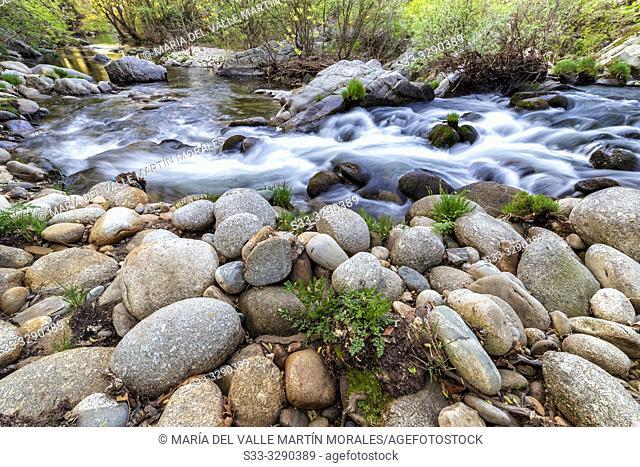 Arenal river in spring time. Avila. Spain. Europe