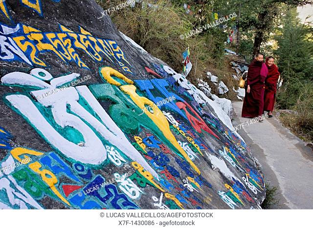 inscriptions on prayer carved stones in Lhagyal Ri,near Tsuglagkhang complex,McLeod Ganj, Dharamsala, Himachal Pradesh state, India, Asia