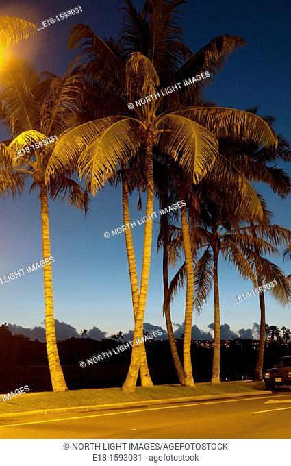 USA, Hawaii, Oahu Waikiki