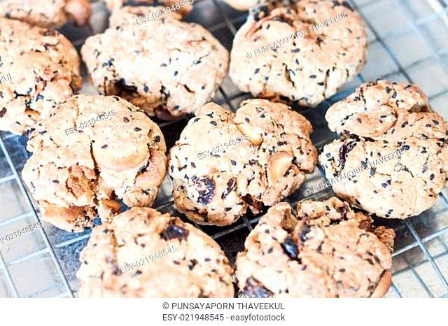 Closeup cereal cookies cooling on a rack