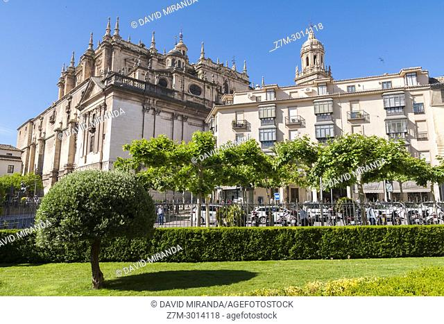 Cathedral. City of Jaen. Andalusia. Spain