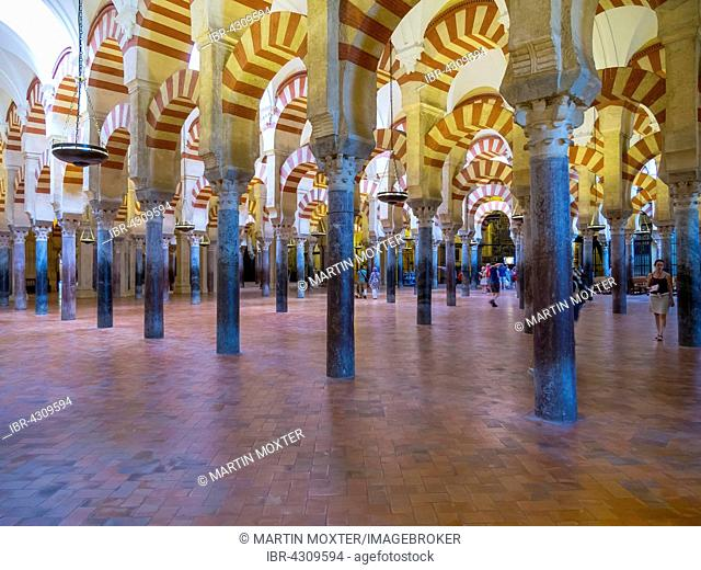 Interior of the Mosque of Cordoba, portico, Córdoba province, Andalucía, Spain