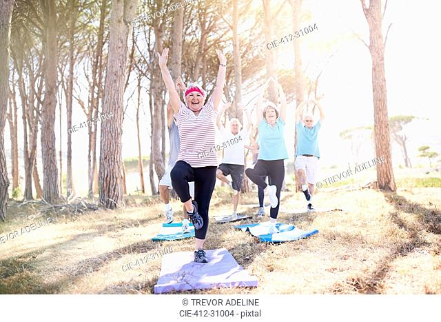 Senior adults practicing yoga in sunny park