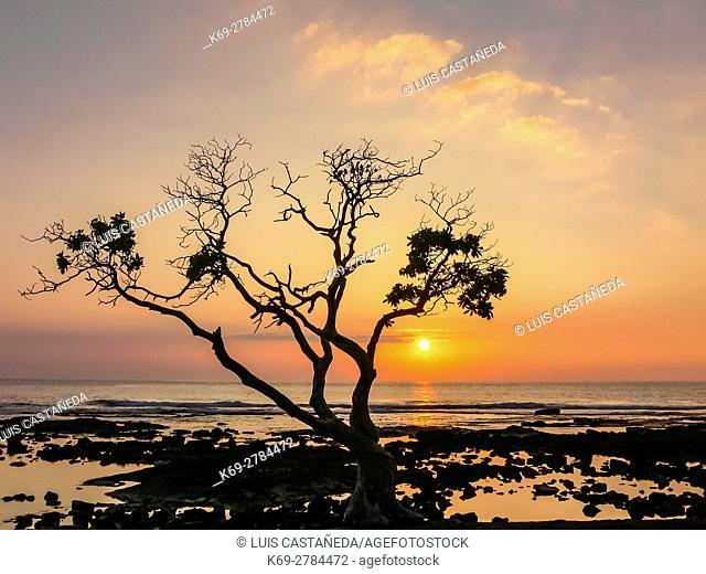 Sunset at Kona Beach. Old Kona Airport Beach Park. Hawaii, USA