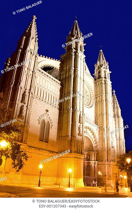 Cathedral of La Seu Majorca in Palma de Mallorca night view Balearic Islands
