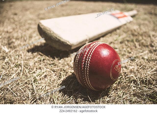 Cricket sports equipment lay on a backyard grass pitch. Antique test match