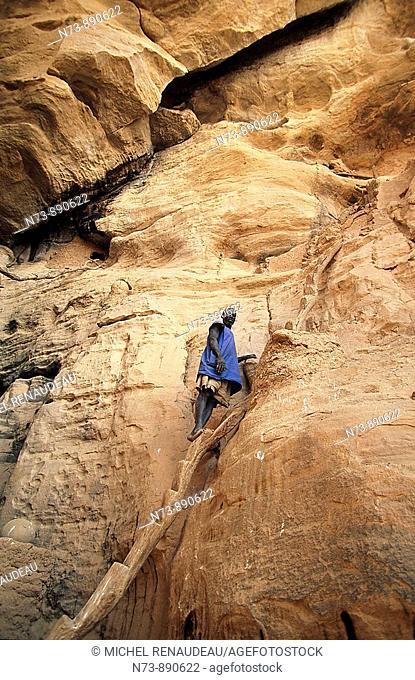 Ladder on cliff, Yougo Dougourou, Dogon Country, Mali