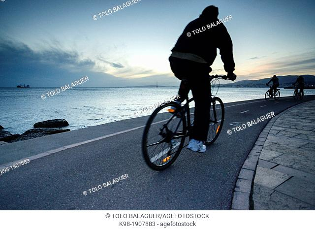 cyclists, Passeig Molinar, Palma, Mallorca, Balearic Islands, Spain, Europe