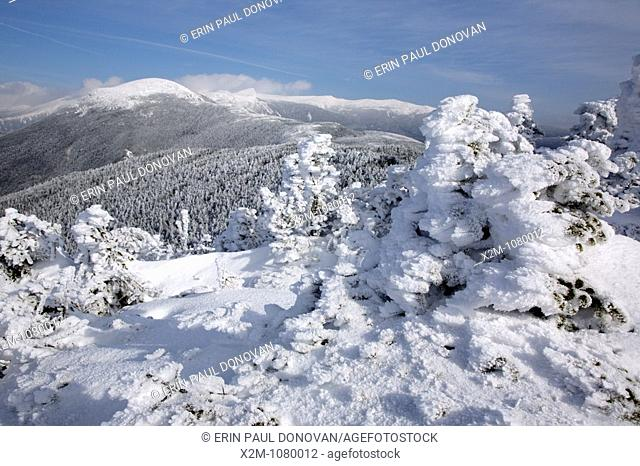 Appalachian Trail - Mount Eisenhower from Crawford Path in the White Mountains, New Hampshire USA