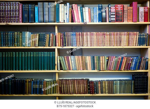 shelves with many books, Spotlight