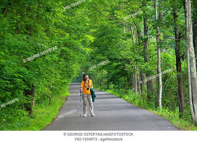 Rail-trail, Farmington River Trail, Farmington, Connecticut
