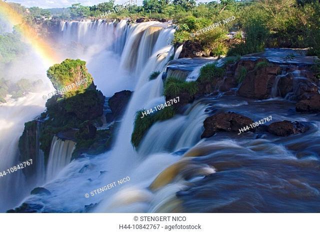 Iguazu Falls, Iguazu, national park, Iguassu Falls, Argentina, South America, America, Attraction, tree, Brazil, South