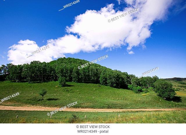 Bashang grassland in Inner Mongolia