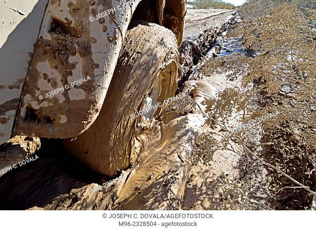 Jeep stuck in deep mud closeup, Mojave Desert, California, USA