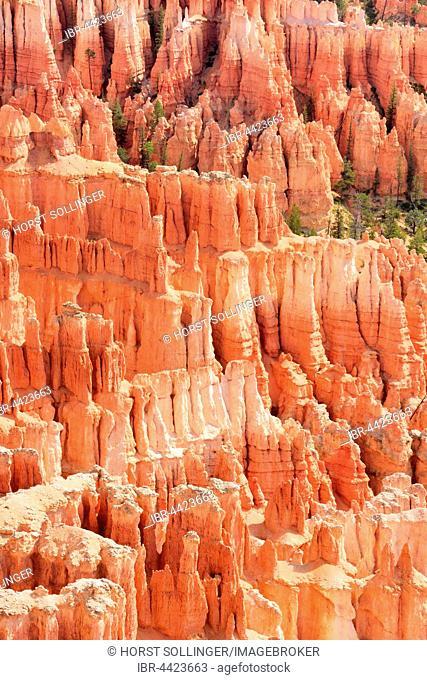 Red eroded limestone columns, Bryce Canyon National Park, Sunrise Point, Utah, United States