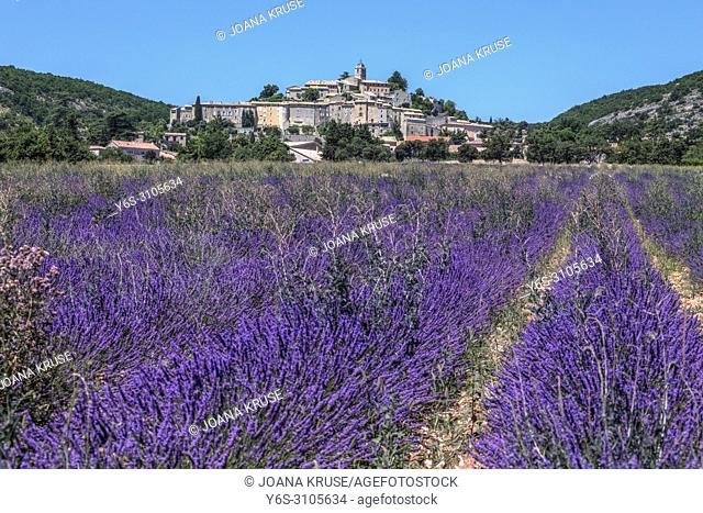 Banon, Alpes-de-Haute-Provence, France, Europe