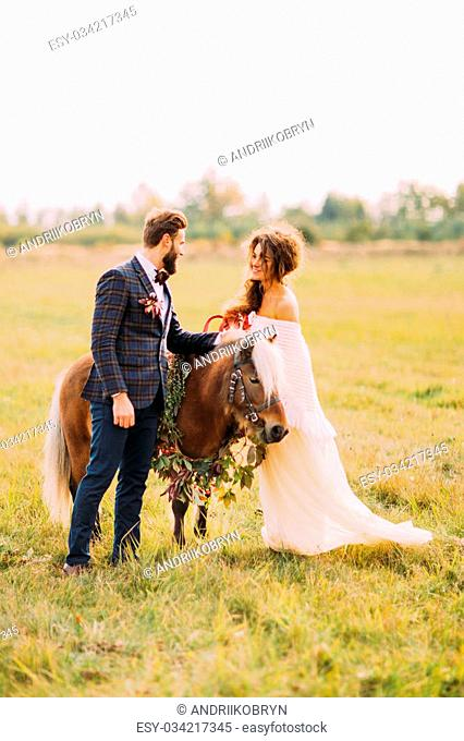 wedding couple walking with little pony in the field