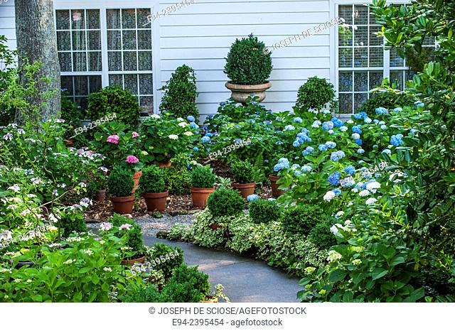 Outdoor living space in a garden setting featuring hydrangeas and boxwoods. Georgia USA