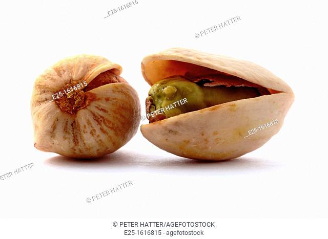 Two pistachio nuts isolated on a white background