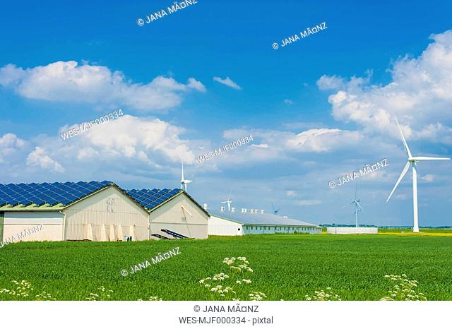 Germany, Schleswig-Holstein, View of solar panel on house roof
