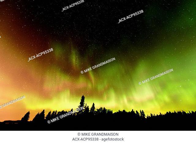 Northern lights (Aurora borealis) Birds Hill Provincial Park Manitoba Canada