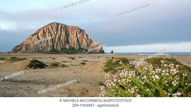 The Rock at Morro Bay, California