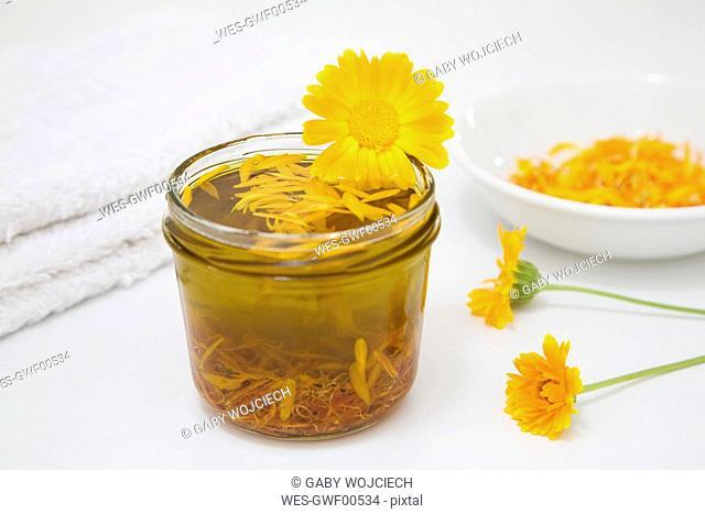 Calendula Oil, close-up