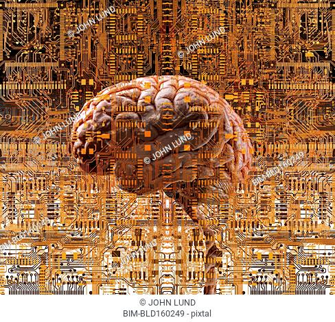 Brain under layers of circuit boards
