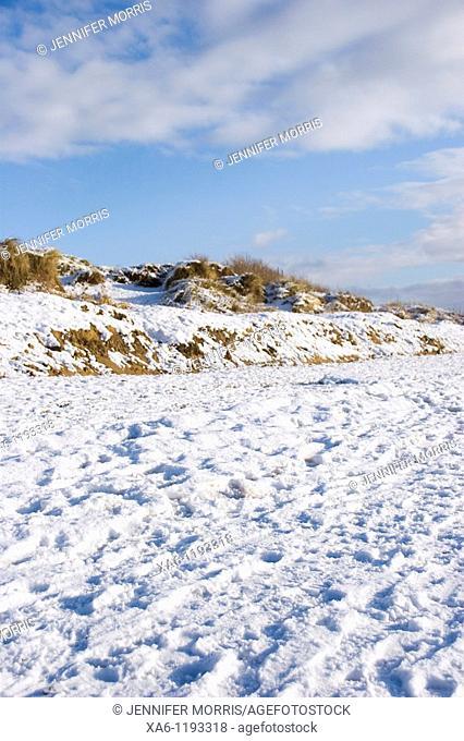 A snowy beach under a blue sky