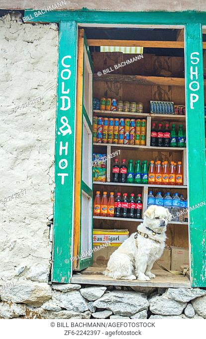Nepal A guard dog standing watch at a small store in Soso Kharka Solukhumbu, remote, Mt Everest, Himalayas