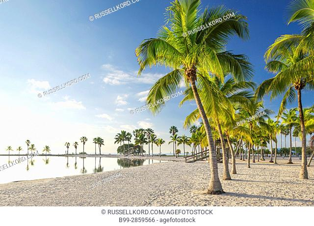 SAND BEACH REFLECTING POOL ATOLL MATHESON HAMMOCK COUNTY PARK MIAMI FLORIDA USA