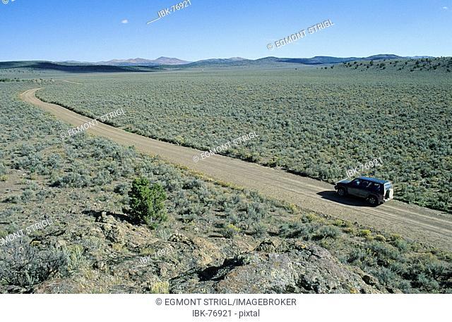 Vehicle on dirt road, historic California Trail, Goose Creek Valley, Nevada, USA