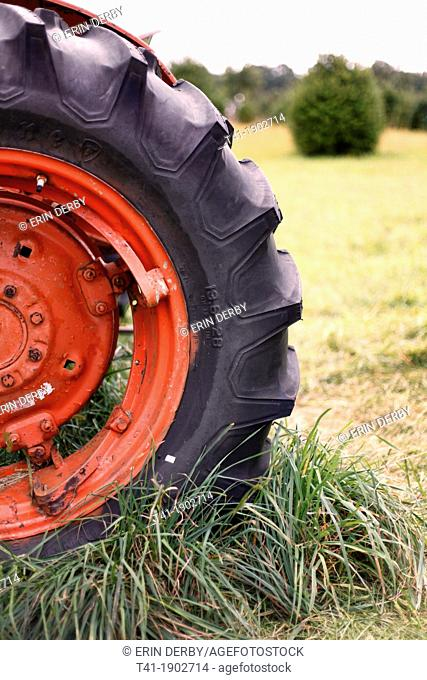 A red and black tractor tire in the grass on a farm