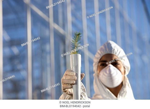 Scientist in clean suit holding tree seedling