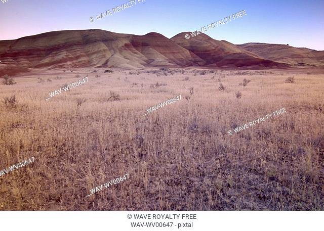 Mineral in the soil cause these colour variations of this hill in the desert, Painted Hills, John Day Fossil Beds National Monument, Mitchell, Oregon, USA