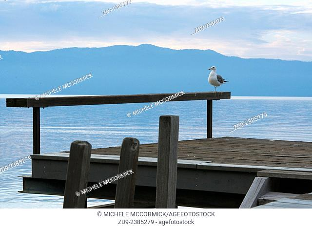 A pier on Lake Tahoe is a reflective spot in the morning light