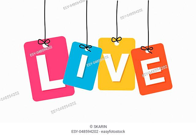 Vector colorful hanging cardboard. Tags - live on white background