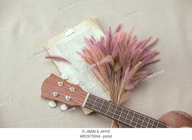 Ukulele with dry flowers and clipped book