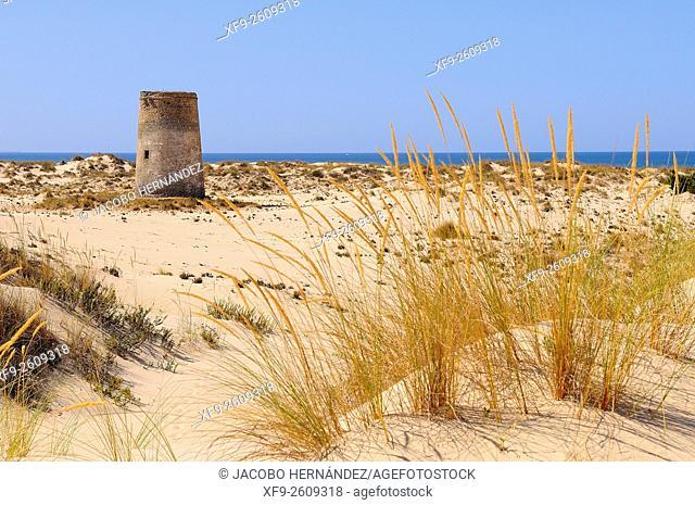 Torre Carbonero.Doñana National Park.Huelva province.Andalusia.Spain
