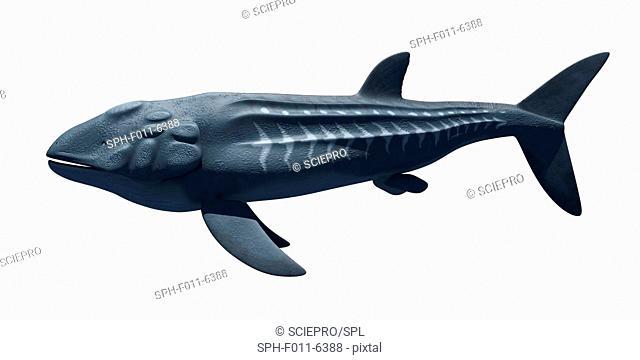 Prehistoric sea creature, computer illustration