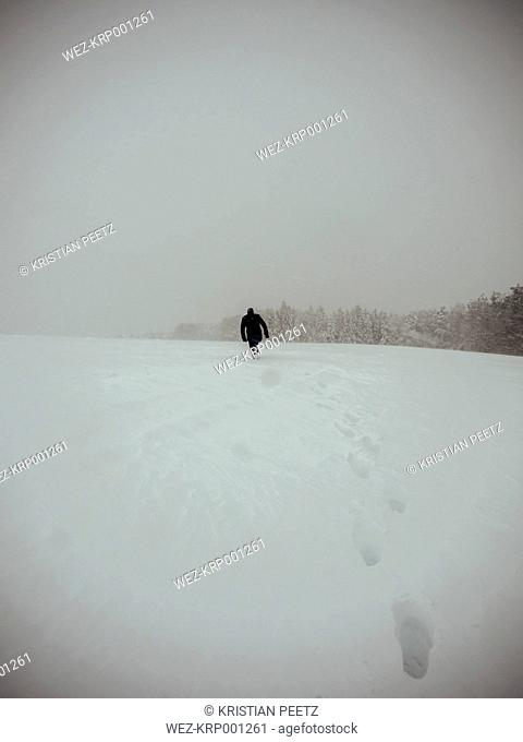 Germany, Black Forest, man walking in snow, in stormy weather