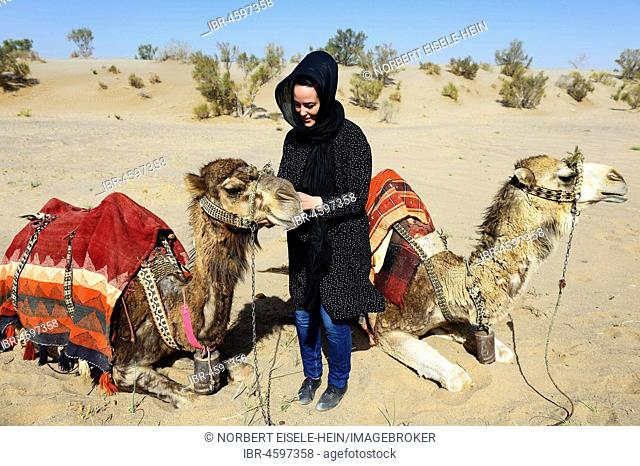 Tourist with resting camels on camel tour, desert Wadi Rum, near Matinabad, Iran