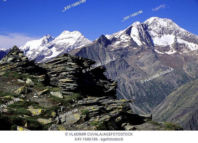 View of the Lagginhorn and Weissmies in Saas valley, Wallis Alps, Switzerland