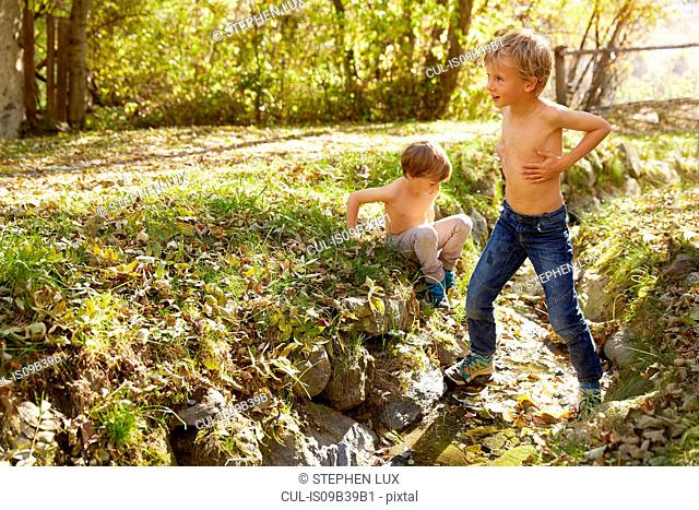 Two boys exploring outdoors, Schluderns, South Tyrol, Italy
