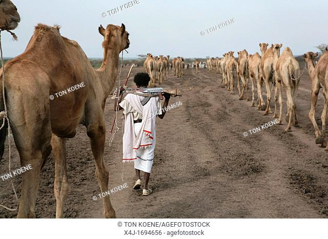 Ethiopian people living in the North of the country are related to Somali people They are nomadic and live from cattle farming Most of them however