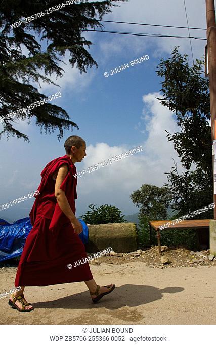 Walking Buddhist nun of Dharamsala, India