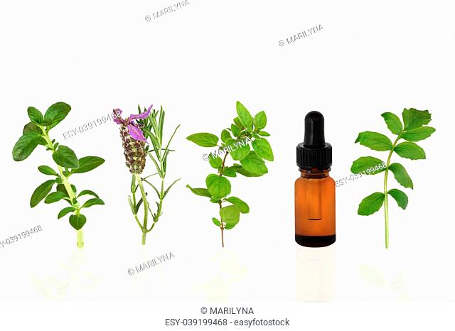 Herb leaf selection of peppermint, lavender, oregano and valerian with an aromatherapy essential oil glass dropper bottle, over white background