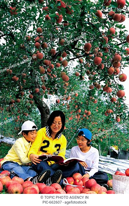 Korean Family in the Apple Orchards