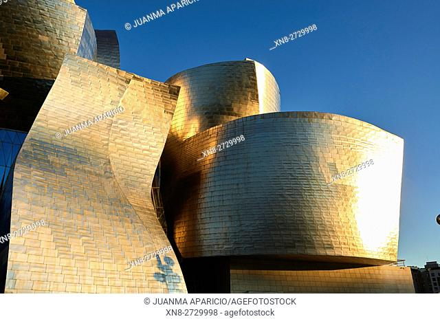 Detail of the Guggenheim Museum, Bilbao, Biscay, Basque Country, Euskadi, Spain, Europe