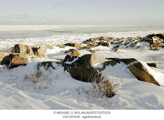 Coast showing Hudson Bay frozen over in late November. Churchill, Manitoba, Canada